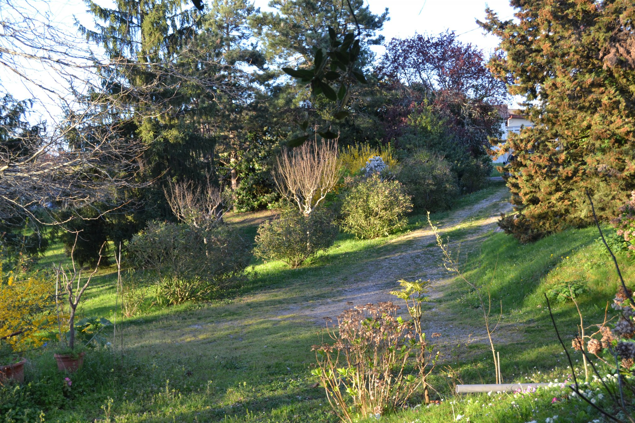 Achat Bien Immobilier Foulayronnes - 47